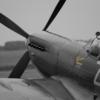 Aircraft Spitfire Monochrome  - Netloop / Pixabay
