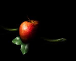 Apple Sin Fruits Adam Eden  - Briam-Cute / Pixabay