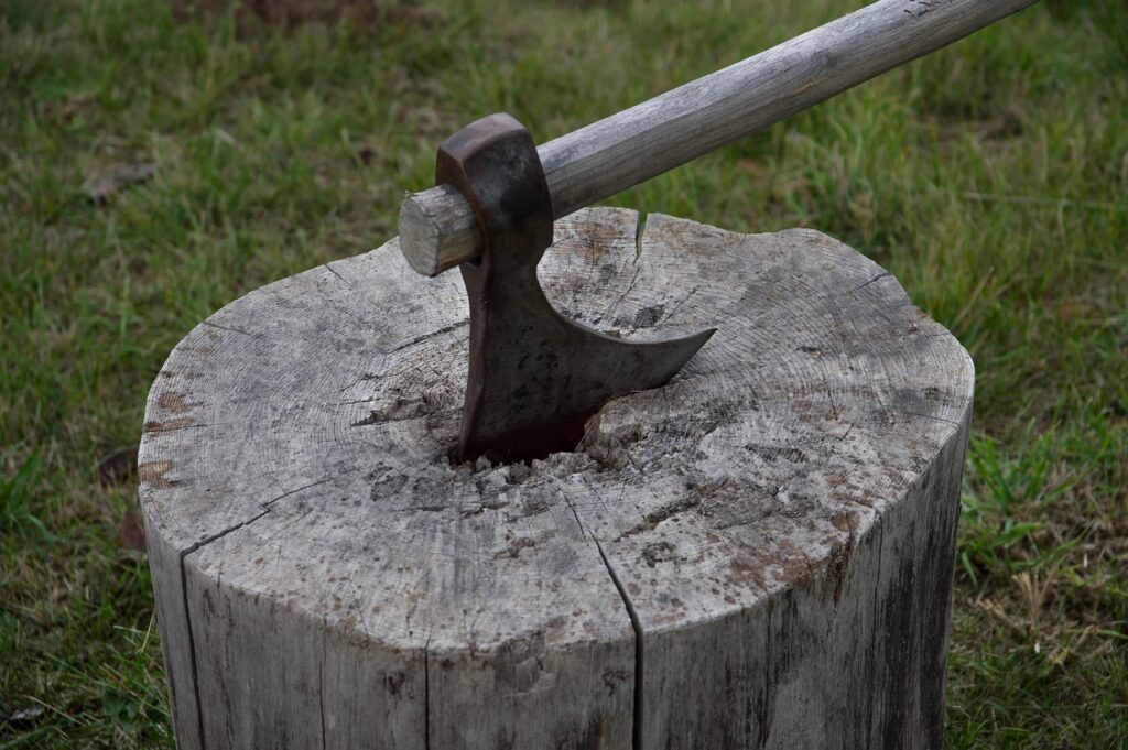 Axe Tool Wood Woodcutter Tree  - jackmac34 / Pixabay