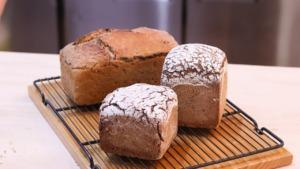 Bakery Fermentation New German Bread  - allybally4b / Pixabay