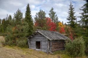 Barn Ruska Lapland Finland Autumn  - LTapsaH / Pixabay