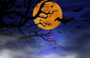 Bats Tree Fog Moon Halloween  - neelam279 / Pixabay