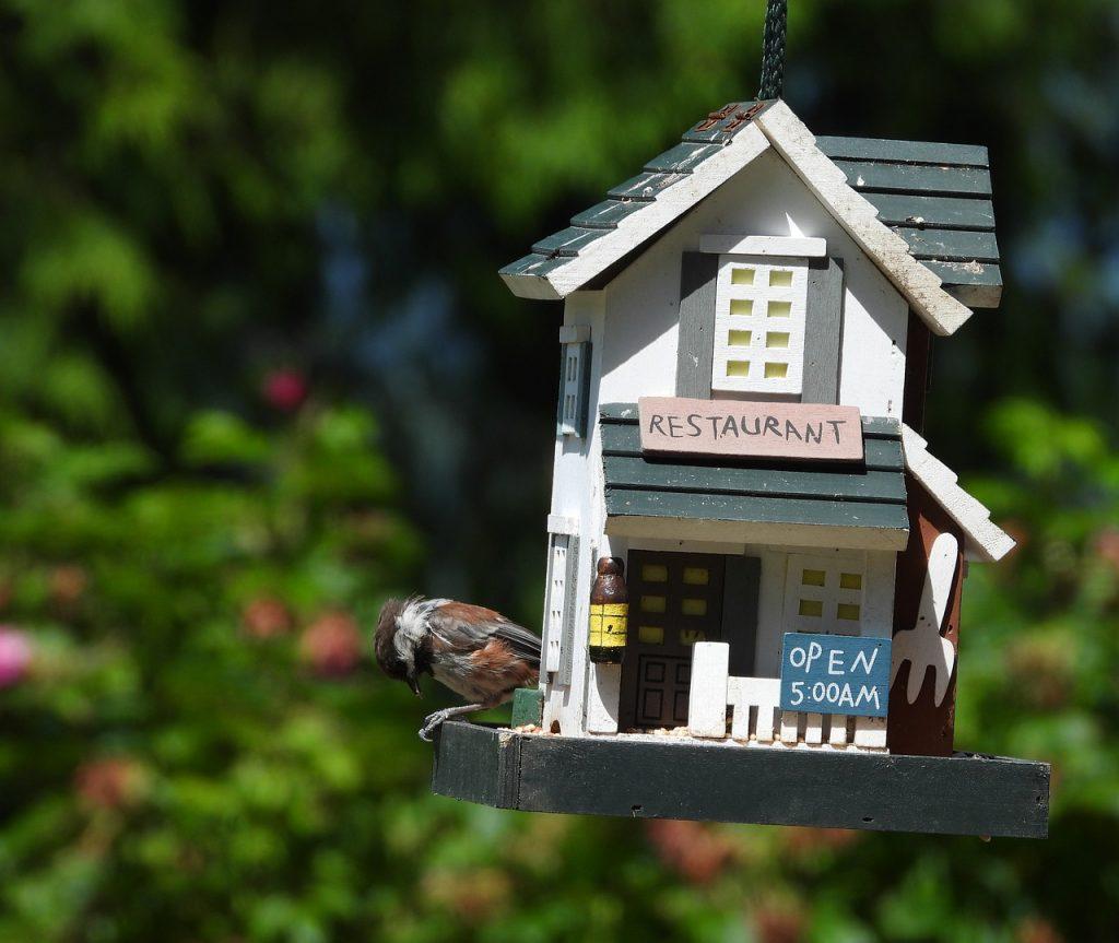 Bird Feeder Wildlife House Wood  - Veronika_Andrews / Pixabay