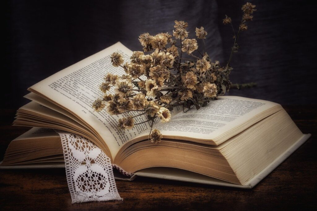 Book Dried Flowers Daisies Bouquet  - Rosy_Photo / Pixabay
