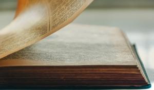 Book Literature Reading Library  - Ri_Ya / Pixabay