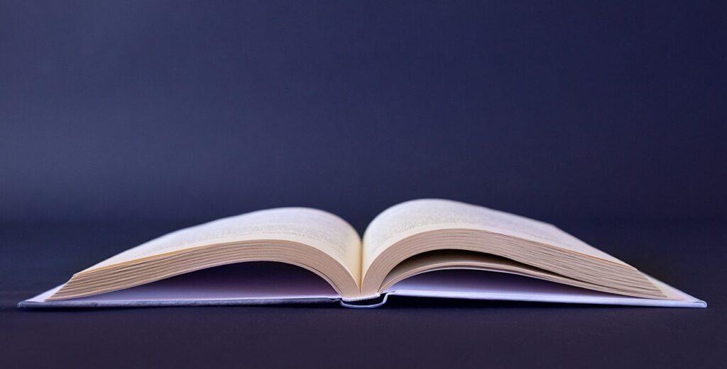 Book Literature Text Paper Educate  - sammy1990 / Pixabay