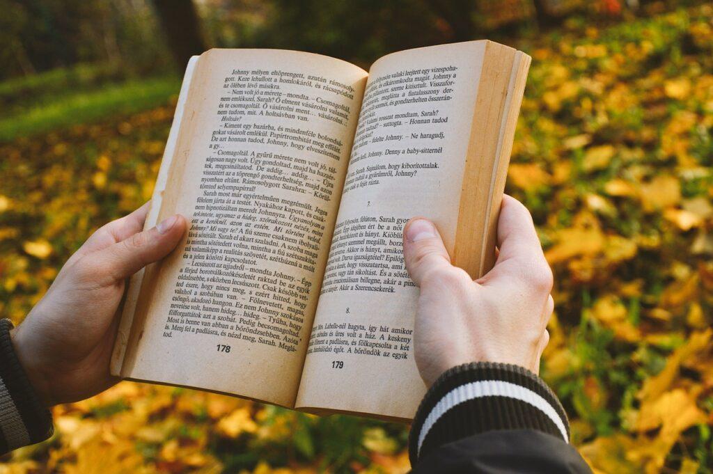 Book Novel Story Literature  - GeriArt / Pixabay