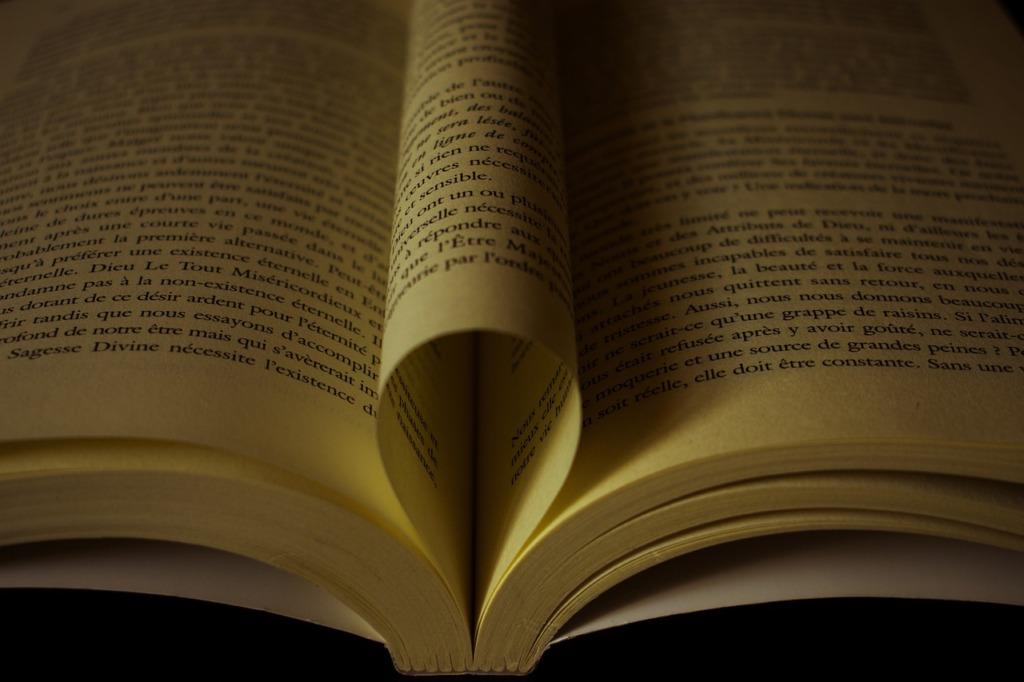 Book Wisdom Literature Novel  - michel89320 / Pixabay