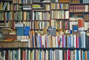 Books Antiquariat Shelf Literature  - misterfarmer / Pixabay