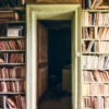Books Collection Literature  - Tama66 / Pixabay