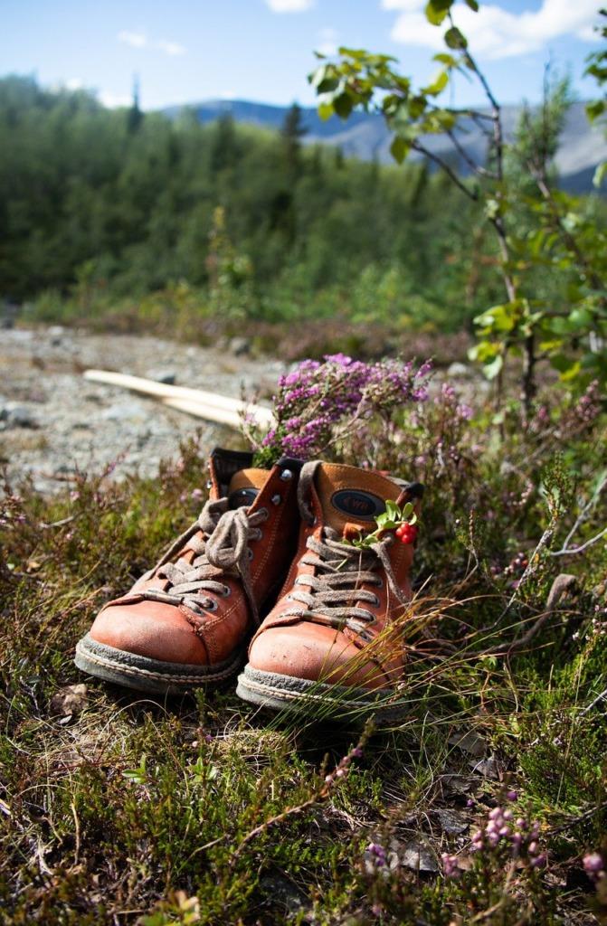Boots Still Life Flowers Shoes  - Marina_Kratko / Pixabay