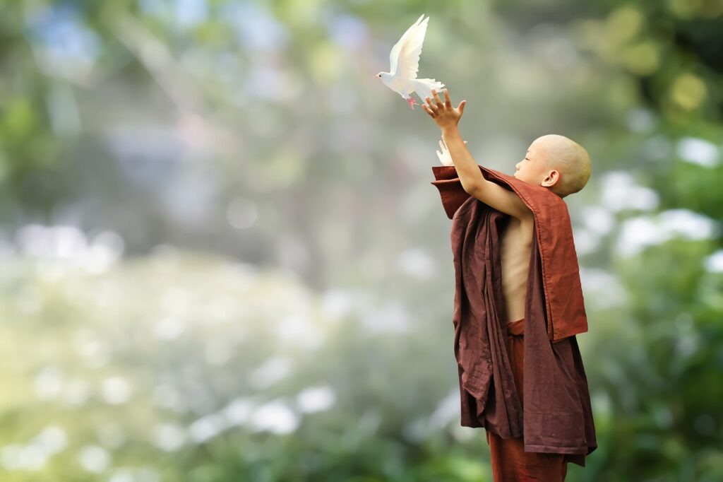 Buddhist Monk Novice Buddhism Bird  - truthseeker08 / Pixabay