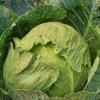 Cabbage Cauliflower Vegetable  - jeanlouisservais / Pixabay
