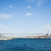 Cable Stayed Bridge Bridge Sea  - Andrey_and_Lesya / Pixabay