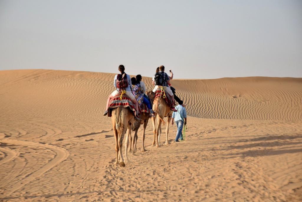 Camels Travel Desert Caravan  - richphotographix / Pixabay
