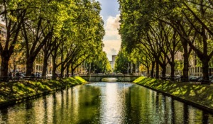 City Canal Bridge Trees River  - ivastavrova / Pixabay