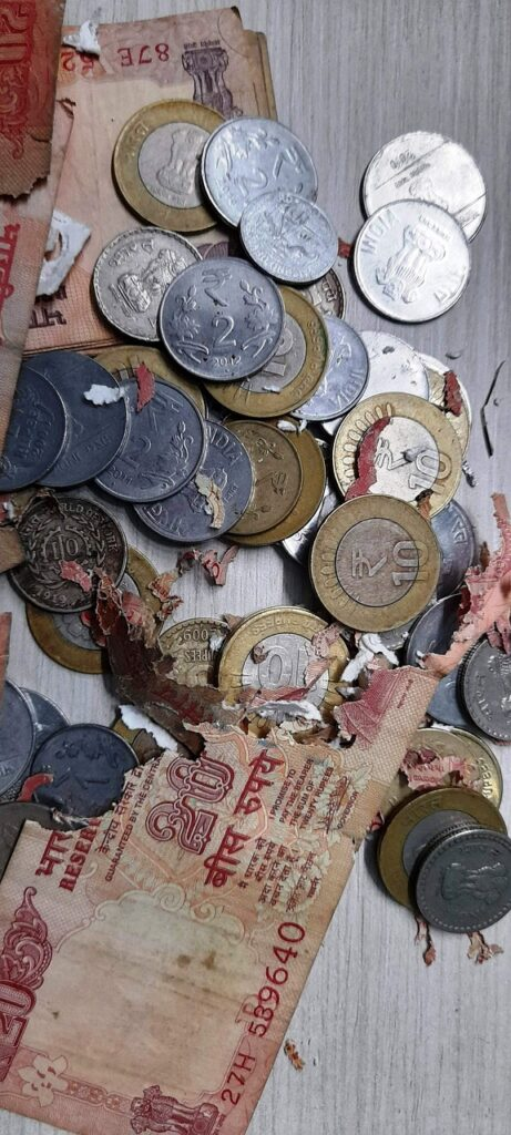 Coins Bills Torn Damaged Money  - PhotoLandCitizen / Pixabay
