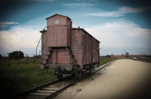 Concentration Camp Structure Rail  - martex5 / Pixabay