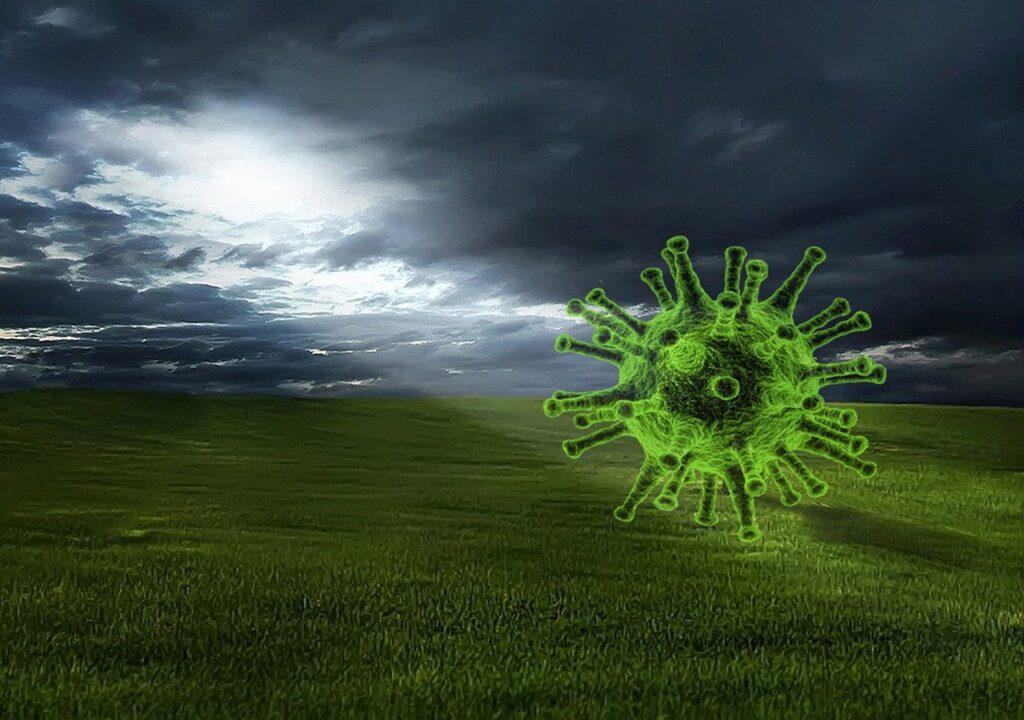 Covid  Virus Field Sunlight  - Matryx / Pixabay