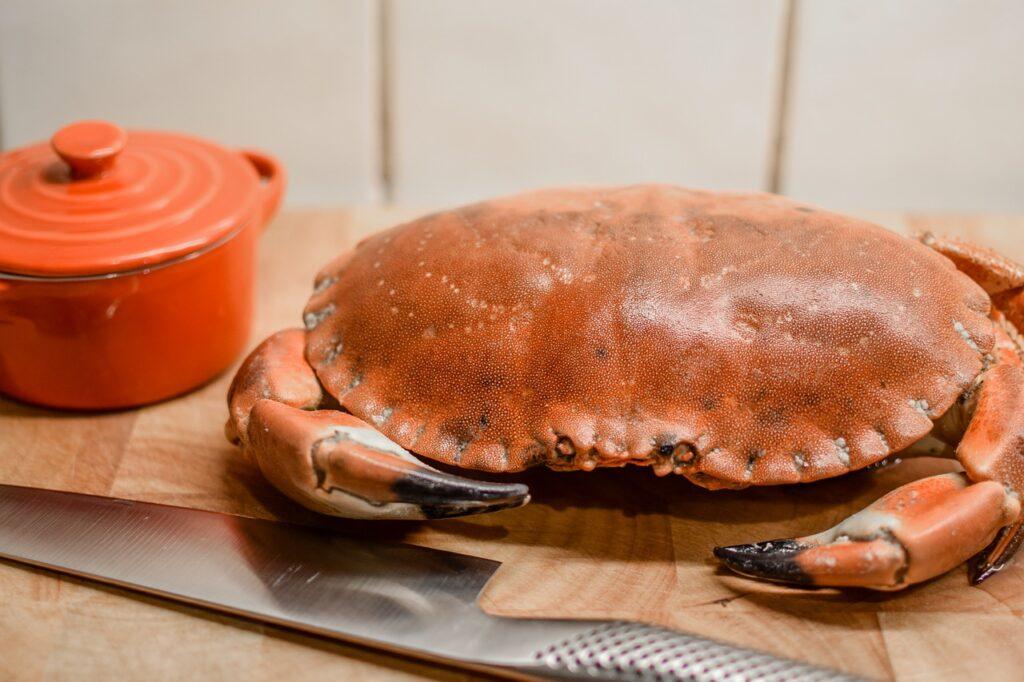 Crab Seafood Dinner Meal  - ugglemamma / Pixabay