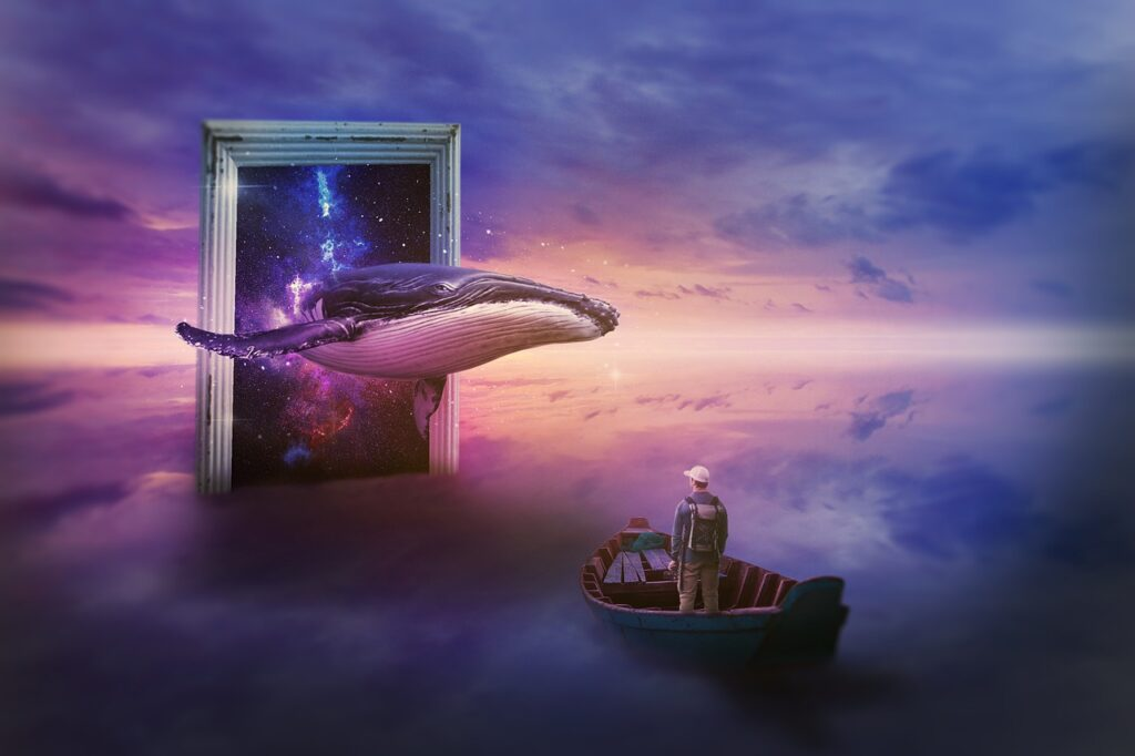Creative Synthesis Whale Fantasy  - DerekTung / Pixabay