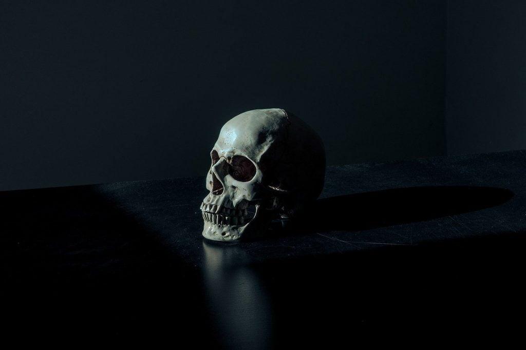 Creepy Dark Eerie Scary Skull  - Pexels / Pixabay
