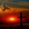 Cross Dove Sunset Faith Religion  - geralt / Pixabay