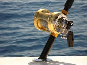 Deep Sea Fishing Penn Reel Ocean  - gwiseman / Pixabay