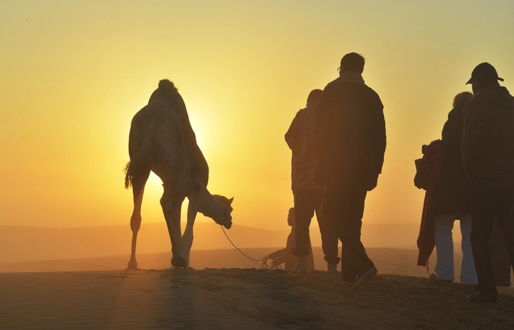Desert Camel Cameleer People  - vishnujayan / Pixabay