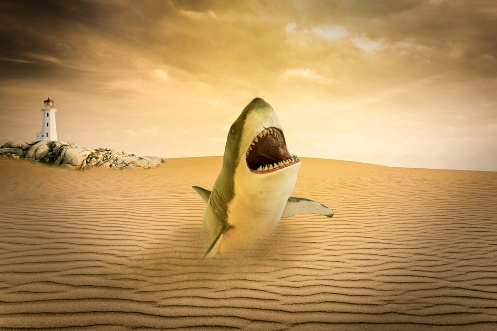 Desert Shark Lighthouse Sand  - SamKey / Pixabay