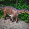 Dinosaur Dinosaur Park Model  - PiotrZakrzewski / Pixabay