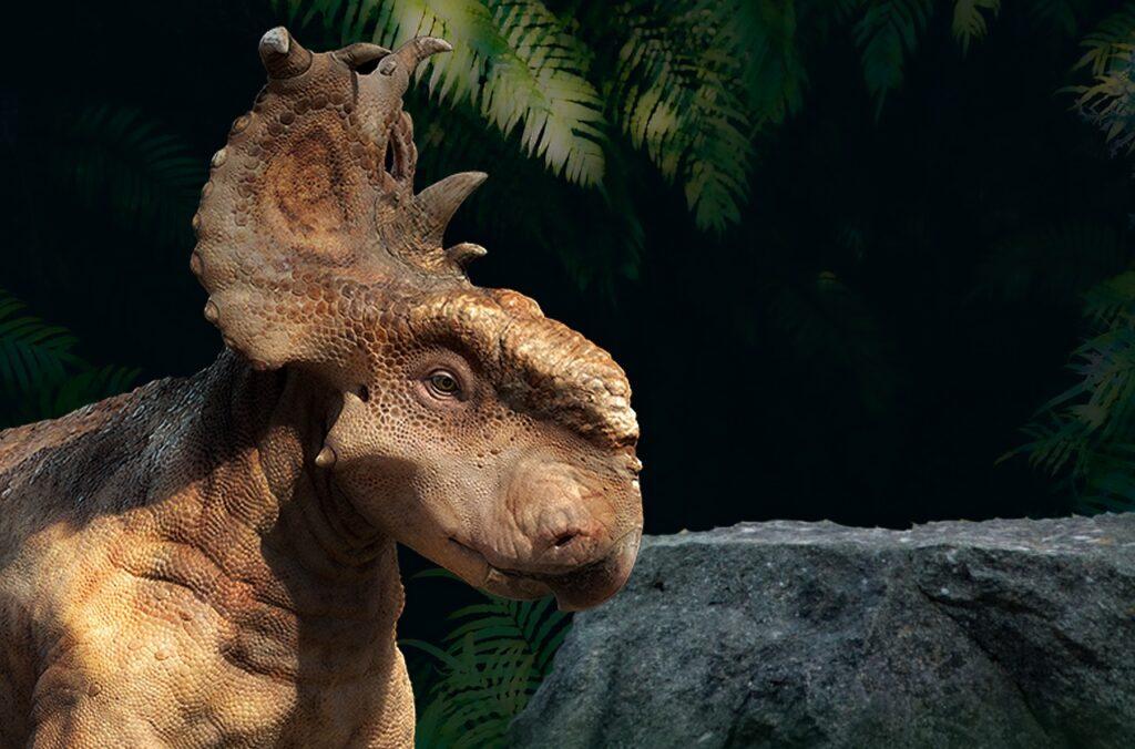 Dinosaur Triceratops Animal Reptile  - BiancavanDijk / Pixabay