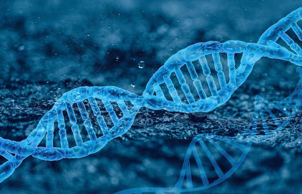 Dna Genetics Molecule Biology  - liyuanalison / Pixabay