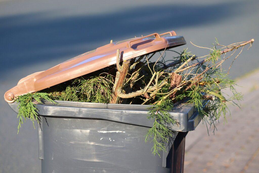 Dustbin Green Cut Brown Ton Waste  - manfredrichter / Pixabay