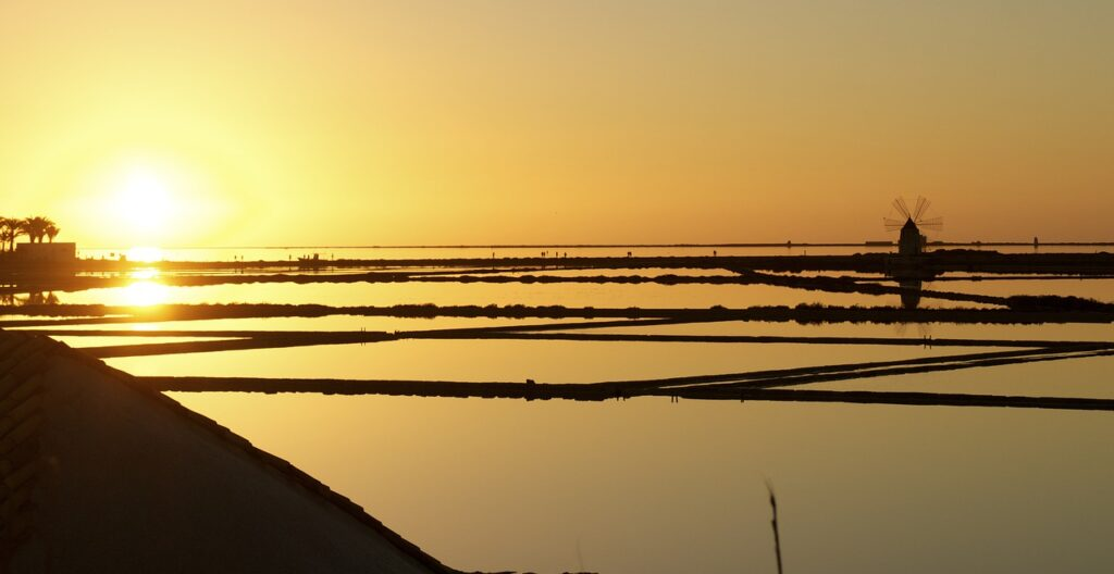 Field Flood Sunset Silhouette Sun  - astridgioia / Pixabay