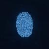 Fingerprint Digital Cybersecurity  - BlenderTimer / Pixabay