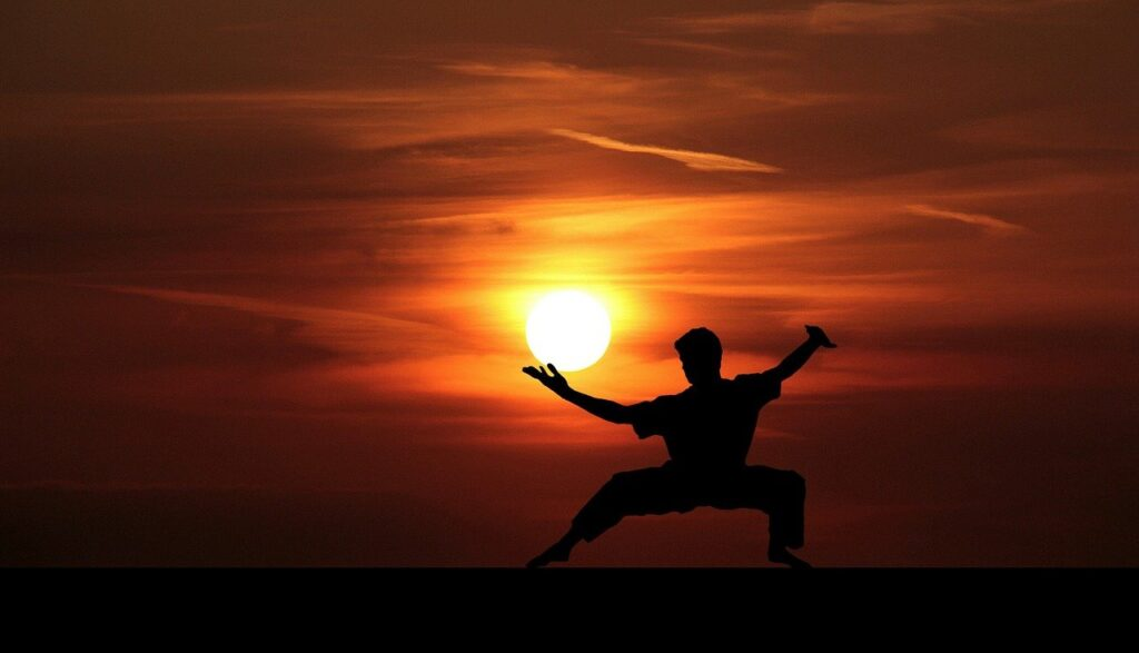 Fu Kung Kungfu Master Silhouette  - mohamed_hassan / Pixabay