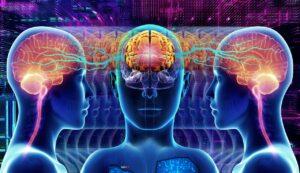 Futuristic Sci Fi Science Anatomy  - ParallelVision / Pixabay