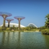 Gardens By The Bay Flower Dome Bay  - tristantan / Pixabay