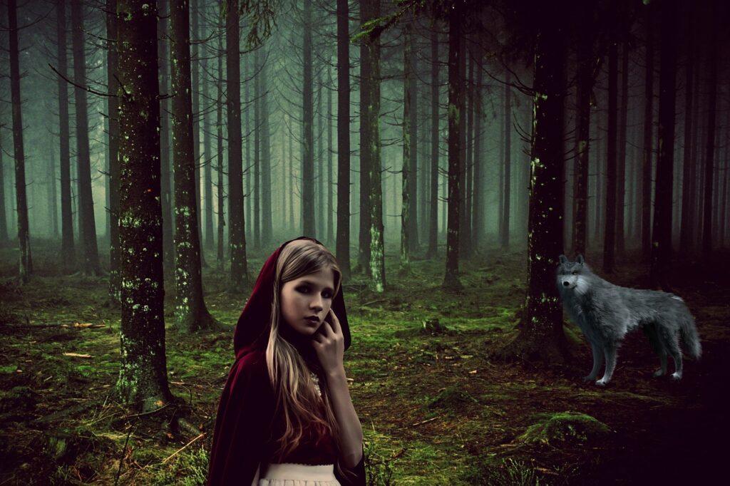 Girl Fairy Tales Rotk%C%Appchen Wolf  - cocoparisienne / Pixabay