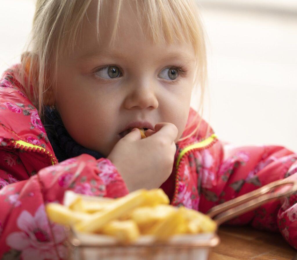 Girl Kid French Fries Eating Food  - DimStock / Pixabay