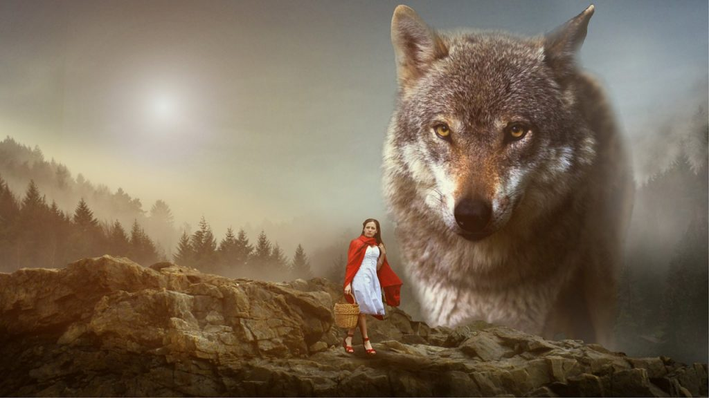 Girl Red Cap Wolf  - Eagle_Arts / Pixabay