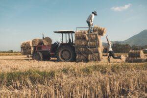 Hay Bales Tractor Rice Field  - TRANPHUCPhoto / Pixabay