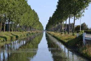 Hoofdvaart Canal Trees Hoofddorp  - SailorWim / Pixabay