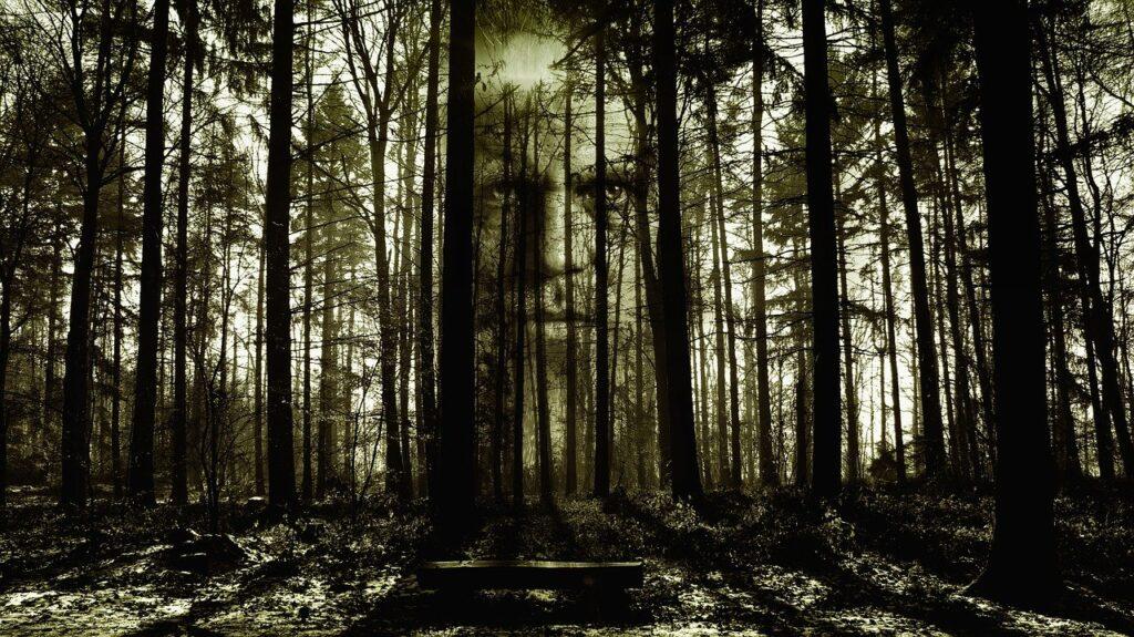 Horror Face Forest Spirit Zombi  - geralt / Pixabay