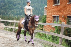 Horse Reiter Pony Horsewoman Ride  - Pezibear / Pixabay