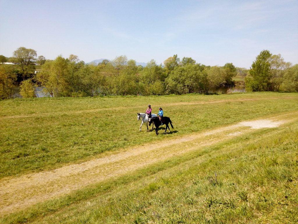 Horses Riding Nature Outdoors  - LukaJagor / Pixabay