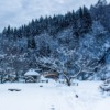 Japan Winter Four Seasons Snow  - ara0w0ara / Pixabay
