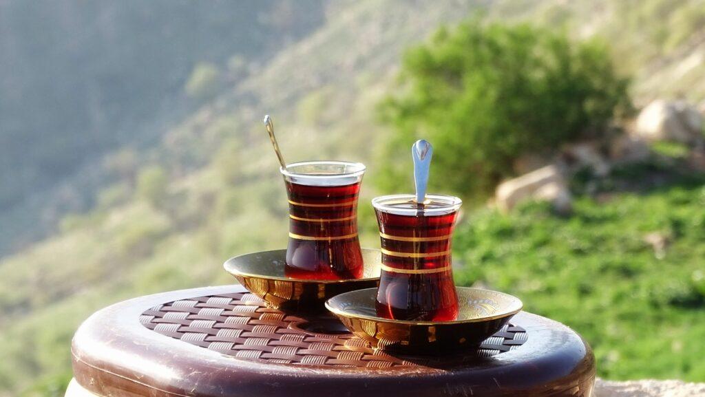 Kurdistan Iraq Tea Mountain Nature  - florencedidiot / Pixabay