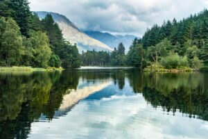 Lake Trees Forest Mountains Lochan  - tanpoposan / Pixabay